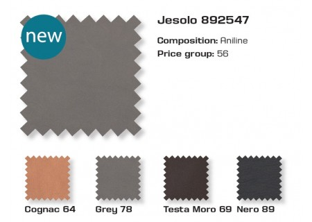 Farben Leder Jesolo PG56